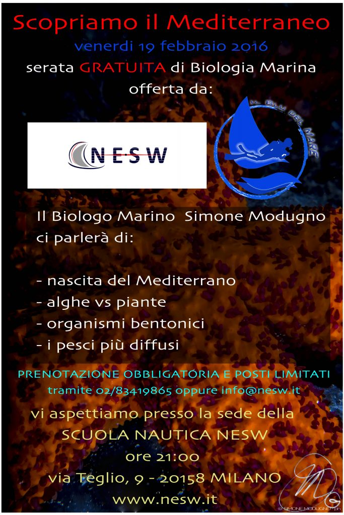 Locandina BIO serate NESW 2016-2